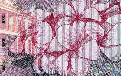 שוק האשראי החוץ בנקאי